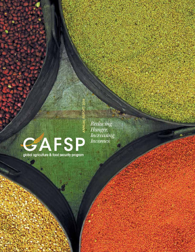 GAFSP Annual Report by Groff Creative