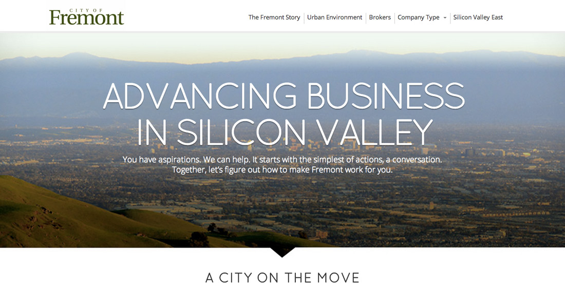Think Silicon Valley