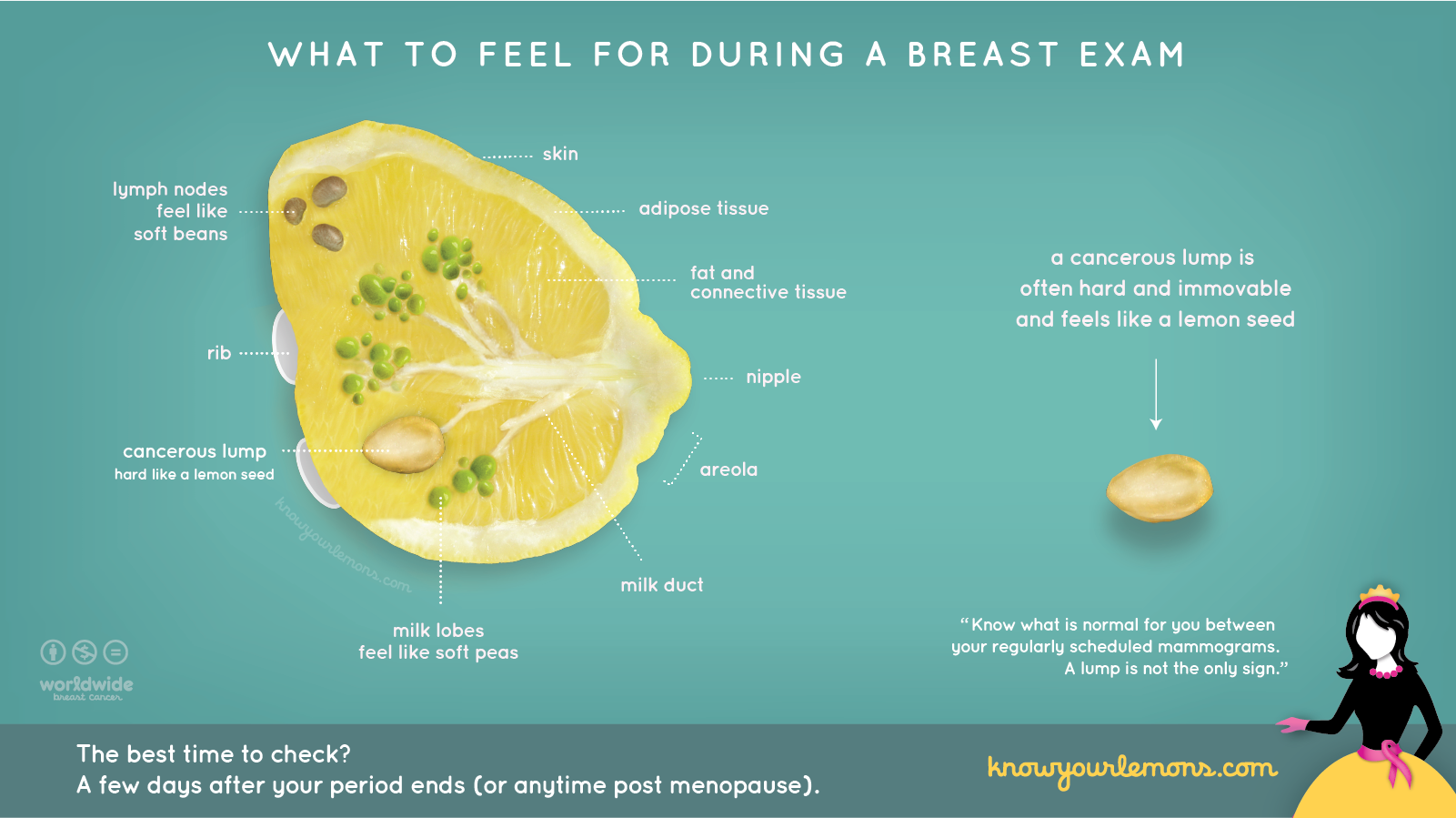 What to feel for during a breast exam